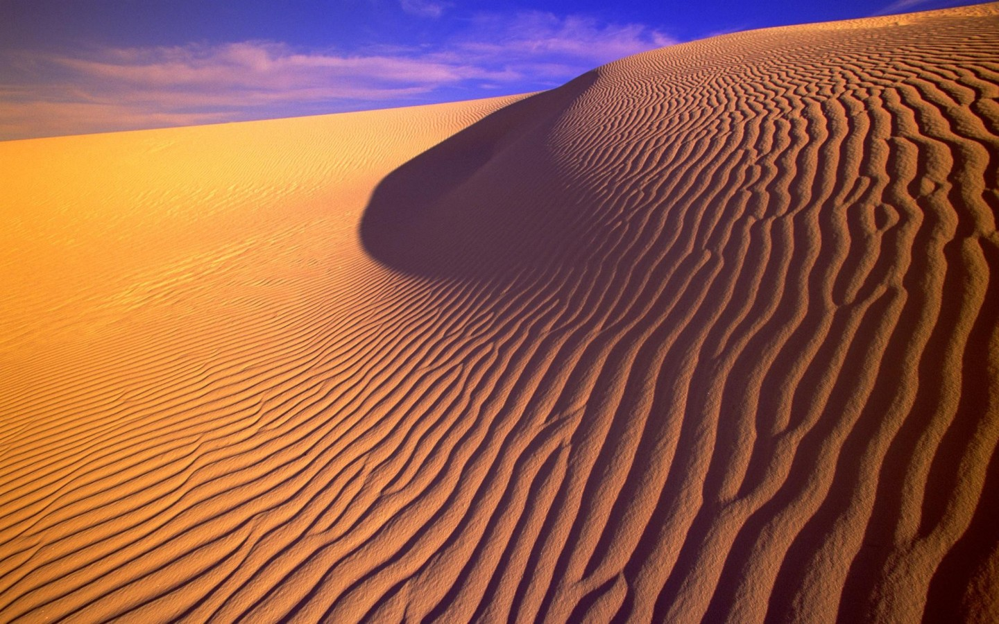 Gypsum Sand Dunes in Evening Light New Mexico
