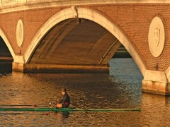 Massachusetts wallpapers - Sculler Below the Cambridge Bridge