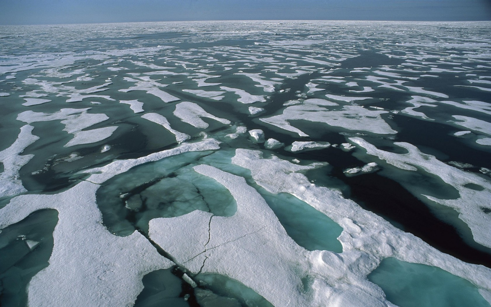 Solid Pack Ice and Surface Melt Water Arctic Ocean