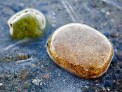 Stones in water macro photo