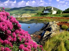 Scotland beautiful landscape, Scotland  wallpaper, Scotland HD photo