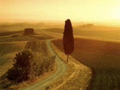 Tuscan Landscape at Sunrise Italy