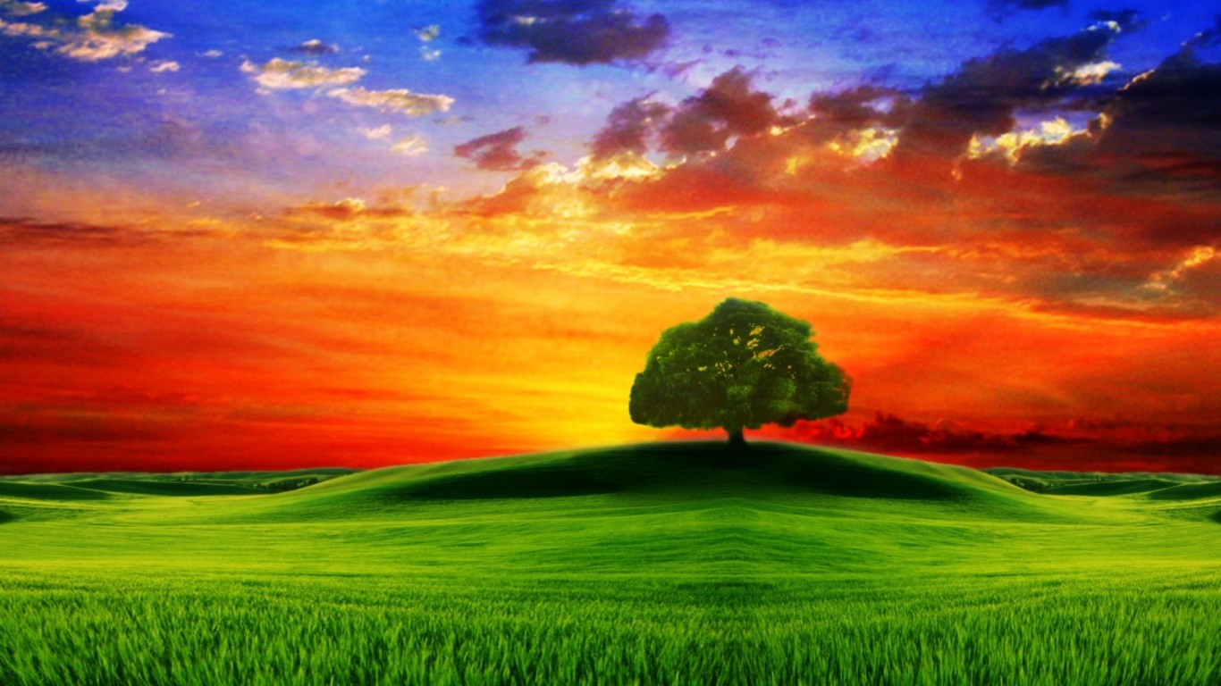 Wallpapers Cataloguecom Drawn Hd Tree On The Hill At