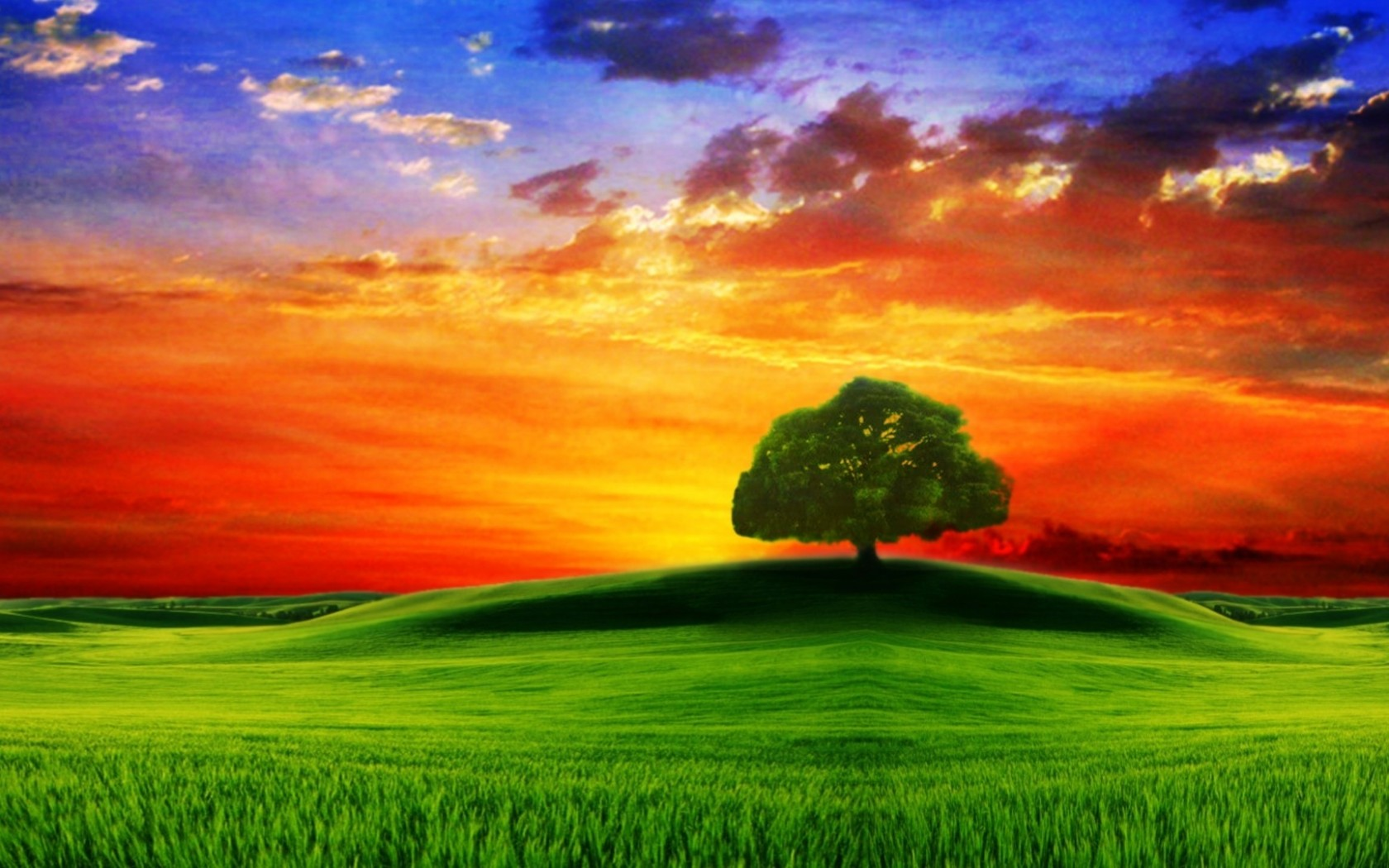 wallpapers-catalogue - drawn hd, tree on the hill at sunset in