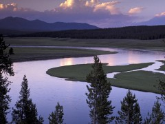 Yellowstone River  wallpapers